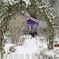 Mein Kleingarten im Januar und Februar. (Bild: Jörg Schnöring)